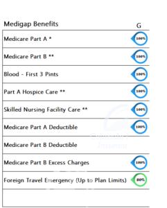 Medicare Supplement Benefits Plan G