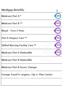 Medicare Supplement Benefits Plan L